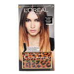 se/3288/1/loreal-preference-wild-ombres-01